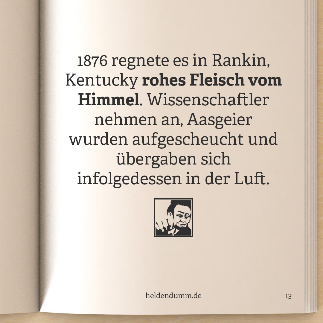 0013-FleischregenVonKentucky