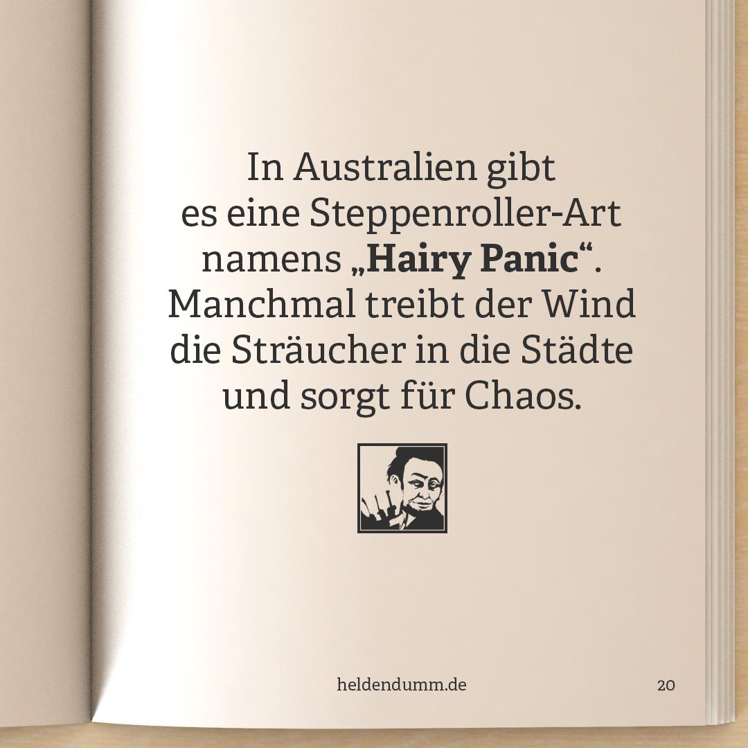 0020-PanischeBuesche